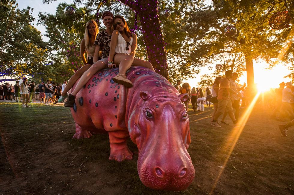 electric-zoo-hippo